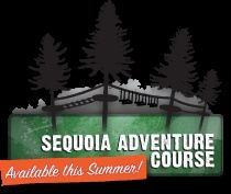 Mount Hermon Ziplining and Adventure Course..Santa Cruz..We are doing this!