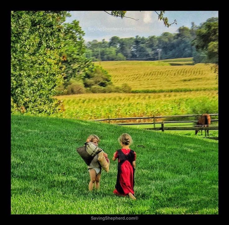 """Today's Truth  """"Two cannot quarrel when one will not.""""  ~Amish Proverb ❤️  #quoteoftheday #picoftheday  #amish #proverb"""