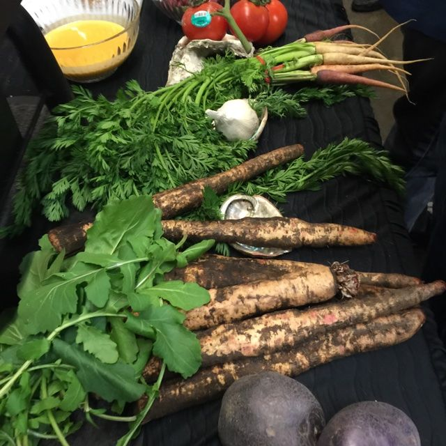Salsify root resembles a long, thin parsnip. Only slightly tapering in shape…