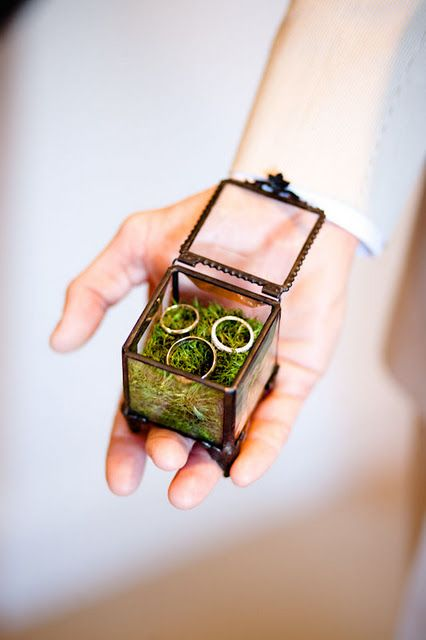 glass ring box with moss