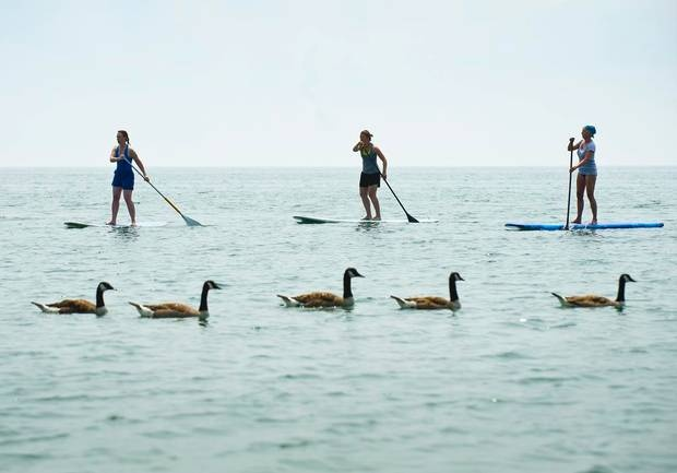 A group of stand-up paddle boarders enjoy the warm temperatures on Lake Ontario near the Beach neighborhood in Toronto, Ontario.  (Kevin Van Paassen/The Globe and Mail)