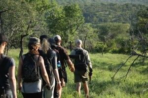 Exclusive Walking Safaris in the Heart of Zululand