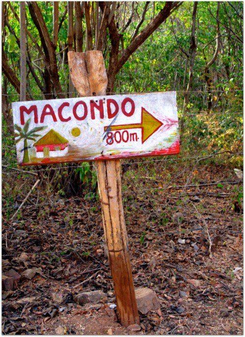 """Cien años de soledad (Aracataca-Macondo se llama actualmente el pueblo donde nació García Márquez, ficción y realidad conviviendo: """"realismo mágico"""")"""