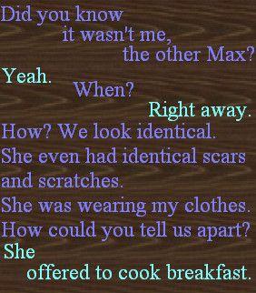 Maximum Ride -    by ~bookworm16016 on deviantART  (purple - Max, blue - Fang)