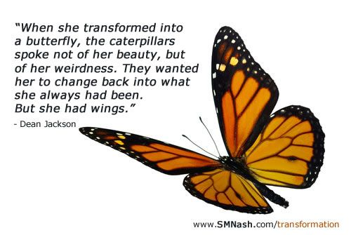 Butterfly Transformation Quotes. QuotesGram