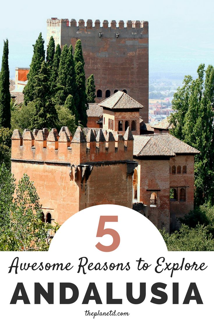 5 awesome reasons you should travel to Andalusia, Spain. Home to beautiful places such as the Alhambra in Granada, Andalusia is full of cities with impressive architecture and courtyards, pristine nature (visit during Almond Blossom season!) and calm walks through unspoiled landscapes. Travel in Europe.   Blog by the Planet D#Spain