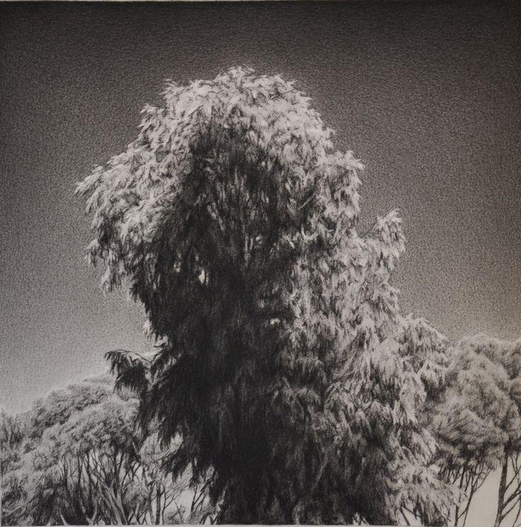 James Bonnici Lindberg Galleries hansen reserve