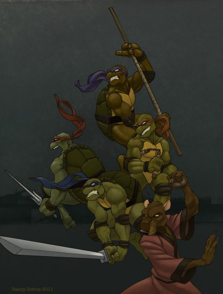Teenage Mutant Ninja Turtles by Randy Bishop