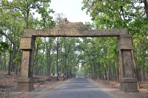 Achanakmar #Wildlife Sanctuary, Bilaspur #Chhattisgarh Takes You Close to Nature - The place was very beautiful and I chose one of the trails and walked on, looking for any animals or birds. Because of the trees and vegetation, the place is cool and shady even during the hot #summer months. #travel #destination #attraction #wanderlust