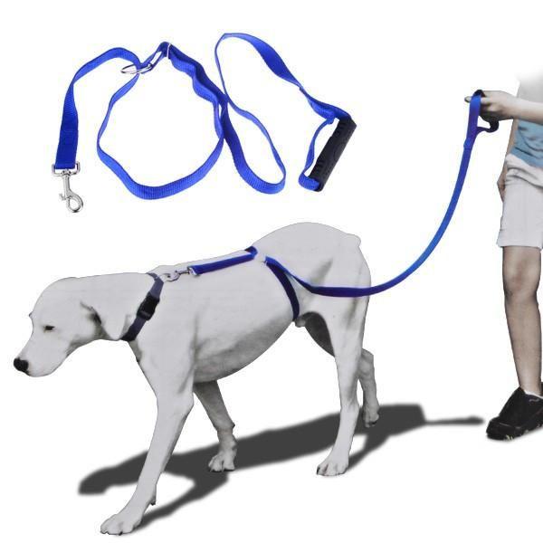 Total Trainer Leash™ - #1 Vet Recommended Leash
