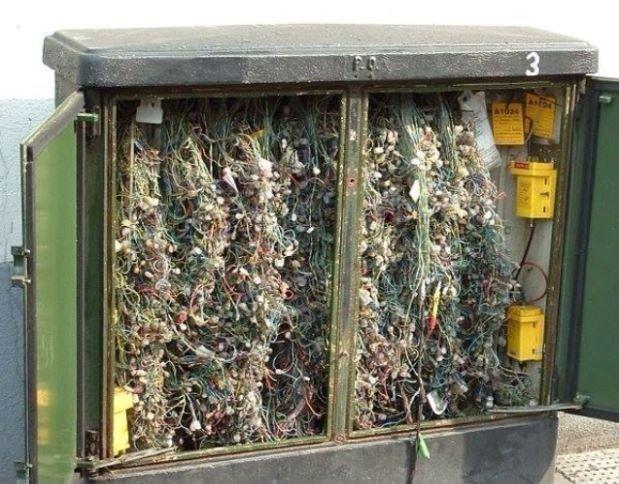 Und dieser Dschungel: | 24 Bilder, bei denen jeder Elektriker einen Schlag bekommt