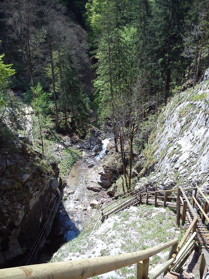 Austria - Mixnitz, Bärenschützklamm, wood stairs