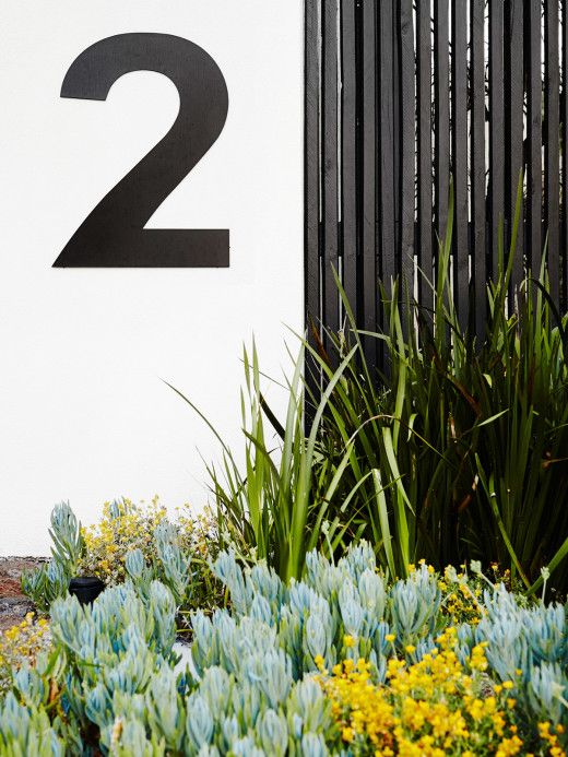 Simple and strong! property entry is softened by a mixed planting of native and exotic plants such as blue chalksticks (Senecio serpens) and yellow buttons (Chrysocephalum apiculatum).