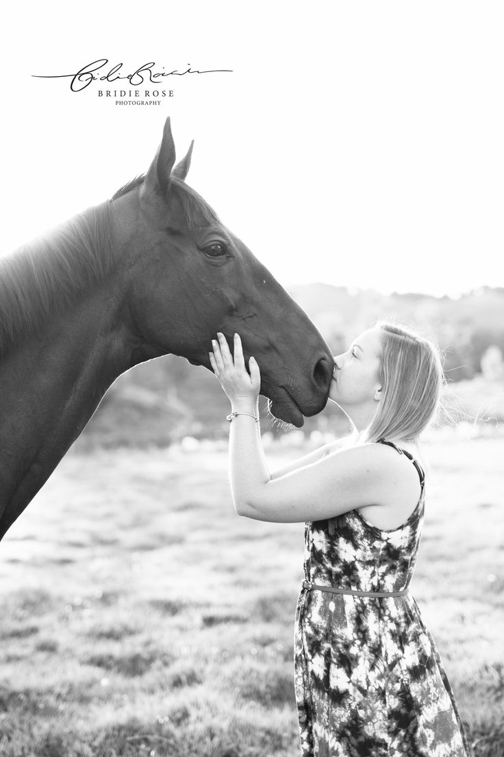 Equine Photographer | Horses | Thoroughbred | Bridie Rose Photography
