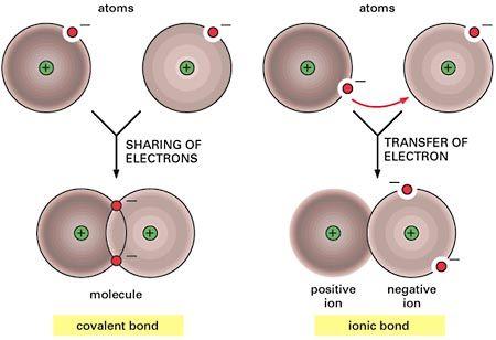 covalent vs ionic bonds  http://apbrwww5.apsu.edu/thompsonj/Anatomy%20&%20Physiology/2010/2010%20Exam%20Reviews/Exam%201%20Review/Ch02%20Properties%20of%20Molecules.htm