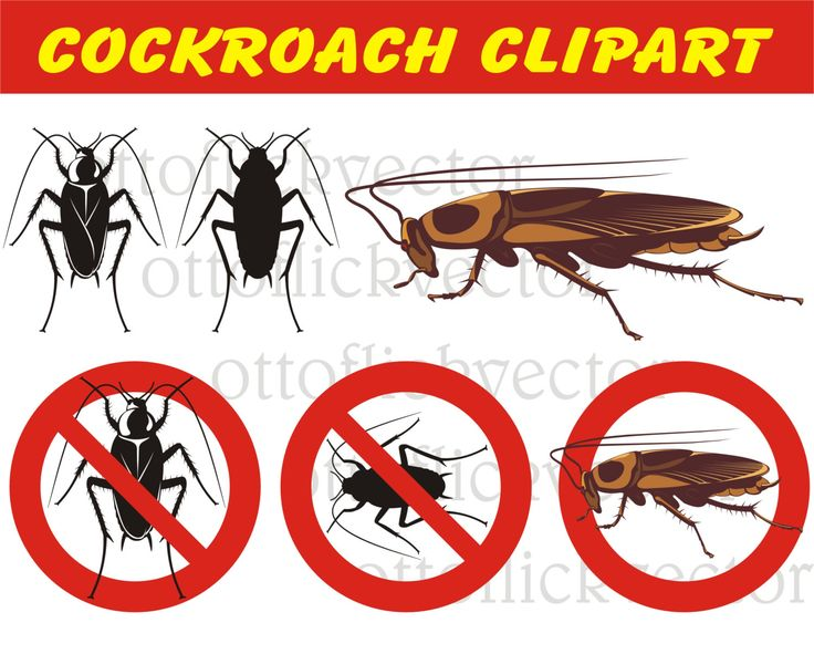 COCKROACH VECTOR CLIPART, Warning Signs, silhouettes, pest icons eps, ai, cdr, png, jpg, pest control, danger disease pollution by ottoflickvector on Etsy