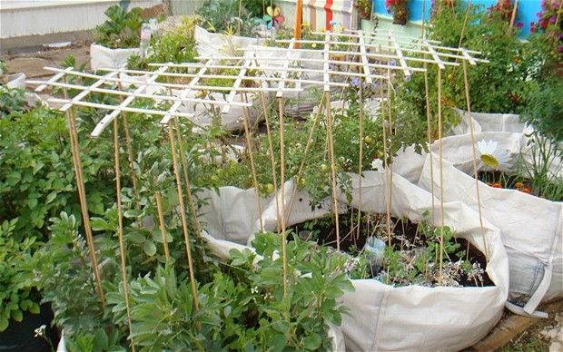 http://www.telegraph.co.uk/gardening/gardenprojects/8746555/The-vegetable-garden-in-a-bag.html    How cool is this?