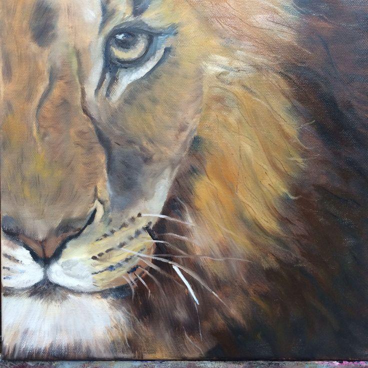 Leeuw, olieverf 30 x 30 cm