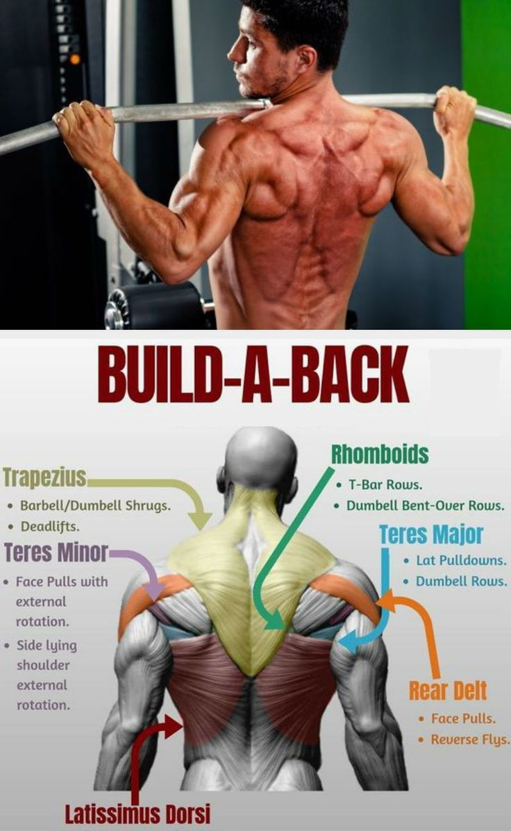 The Best Five Moves To Build A Stronger Broader back… 2