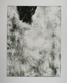 Tawny Frog Mouth, etching