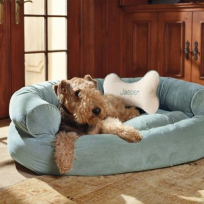 Comfy Couch Pet Bed For Gertie My House Pinterest
