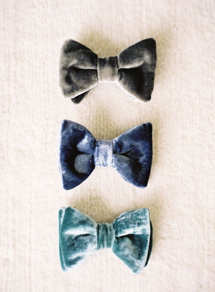Velvet bowties photopgraphed by Jen Huang Photograpy