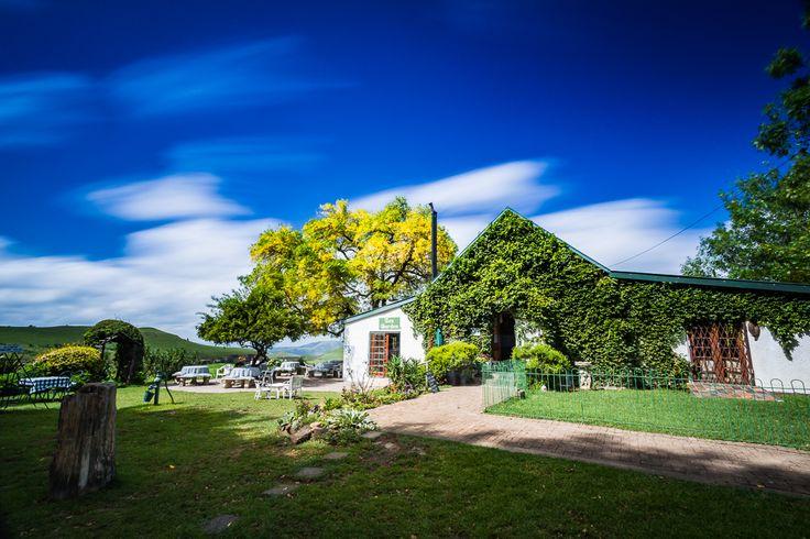 Little Church Tea Garden, in Van Reenens Pass
