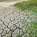 Agricultura Ecológica para combatir el cambio climático – Russo