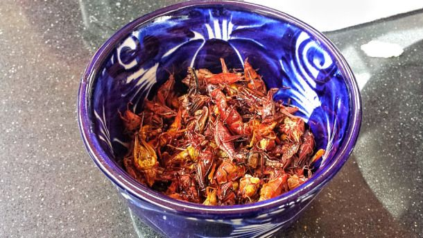 Chapulines! Spicy and tangy fried grasshoppers are typical in Oaxaca and still a delicacy in the rest of Mexico. Casa Jacaranda Cooking class and Market Tour in Mexico City.