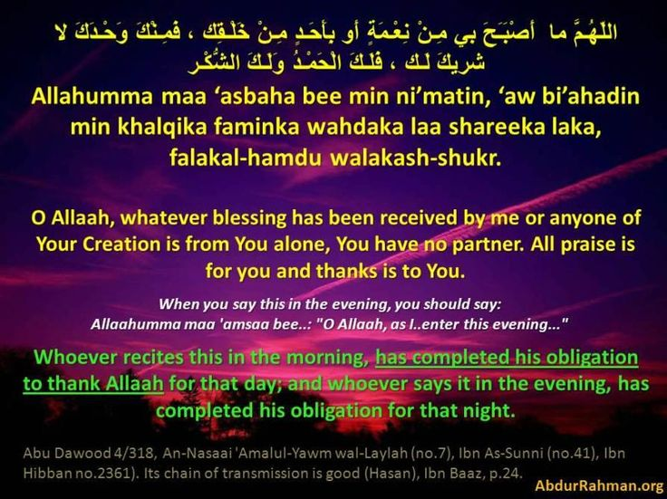 *****Whoever recites this in the morning has completed his obligation to thank Allah for that day, and whoever says it in the evening, has completed his obligation for that night.