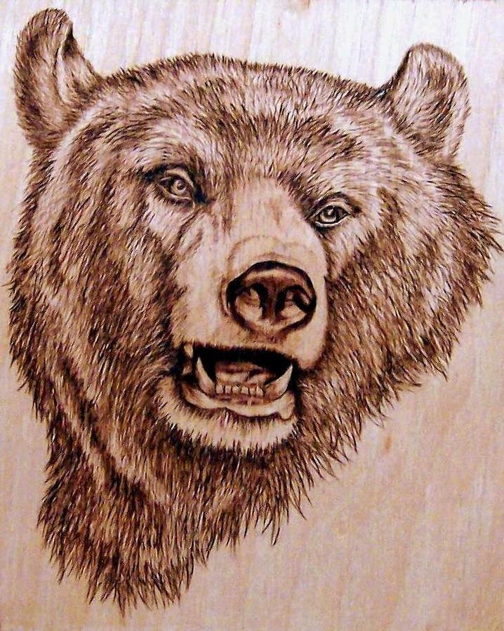 beautiful pyrography bear
