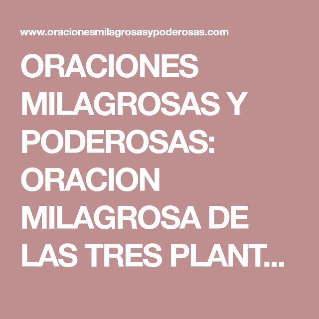 ORACIONES MILAGROSAS Y PODEROSAS: ORACION MILAGROSA DE LAS TRES PLANTAS PARA SUERTE, AMOR, DINERO, SALUD