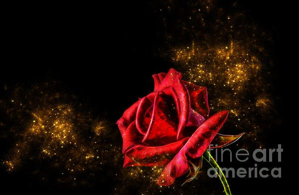 Red rose with pixie dust fantasy art. Available on Fine Art America