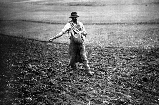 La France paysanne au début du siècle dernier. www.lavieamulhouse.com