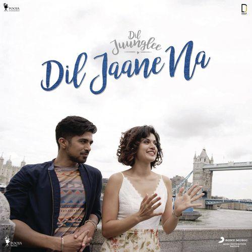 DIL JAANE NA LYRICS | Dil Juunglee - Indian Lyrics