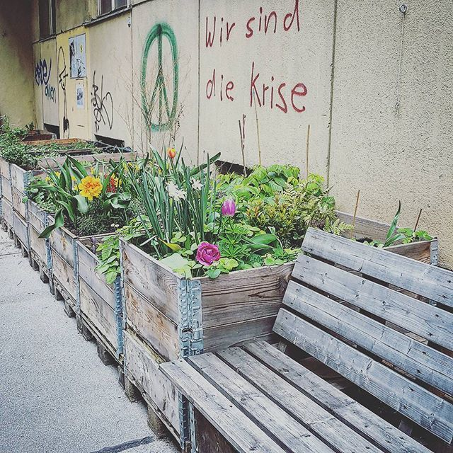 I love Vienna - Urban gardening. #peace