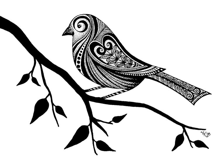 #bird Doodle