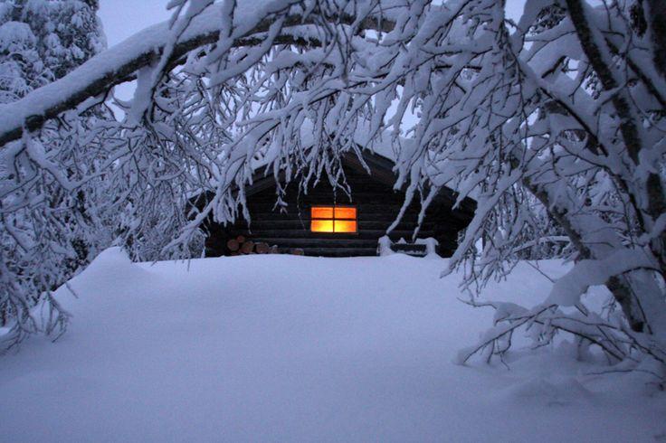 Cabin In Woods >> Wilderness-cabin-in-snow-Fredrik-Broman.jpg (800×533) | Cozy Cabin in the woods | Pinterest ...