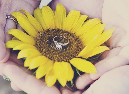 Engagement Photos :: Sunflower Field & Cabin in the Woods – Maybe one day