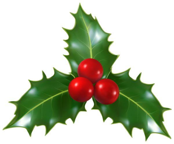 Christmas Holly Mistletoe PNG Clip-Art Image