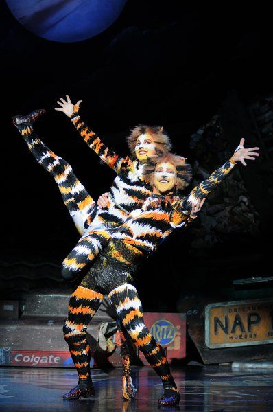 We've Captured Cats on the UK Tour | - Cats The Musical