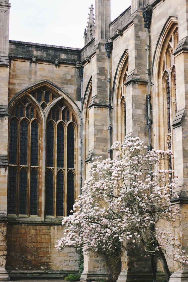 Город Оксфорд: жизнь в одном из самых престижных студенческих мест ... | 1103x736