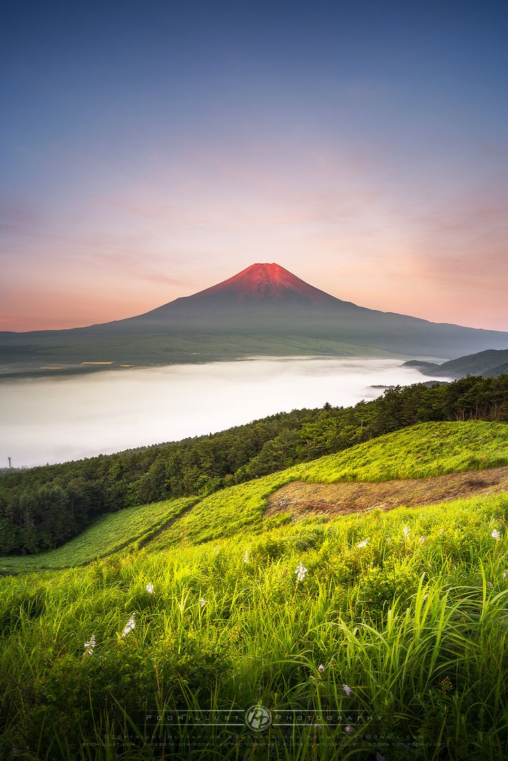 Red Fuji in Summer by Nuttapoom Amornpashara on 500px