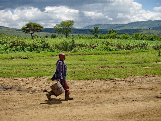 Reducing Poverty in Africa Via Agricultural Development: According to the Economic Commission for Africa (ECA), four out of five people in Africa depend on agriculture for their livelihoods. However, it remains the only region in the developing world to have low and declining agricultural development, with a per capita output totaling 56 percent of the world average. #Africa #Agriculture #Development