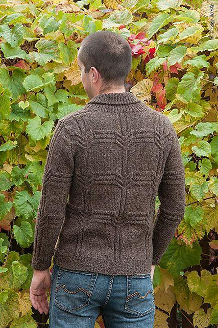Вязание для мужчин свитера Quiver mens