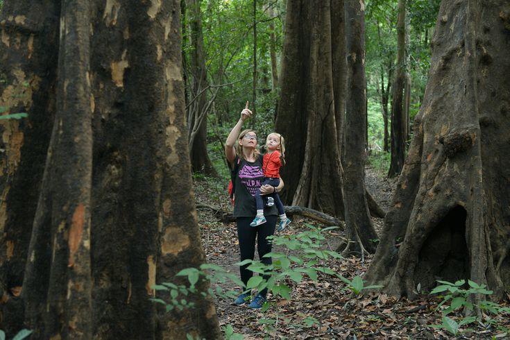 Kahdeksanvuotias poikani herkutteli viidakossa perhosentoukalla, kalasti piraijoita ja kaulaili apinan kanssa. 3-vuotias tyttäreni rakastui tukaaniin, riippumatossa keinutteluun ja suklaakakkuun. Amazon-joen seutu sademetsineen on kuulkaas oikein mainio perhematkakohde.  http://www.exploras.net/matkablogi/30122015
