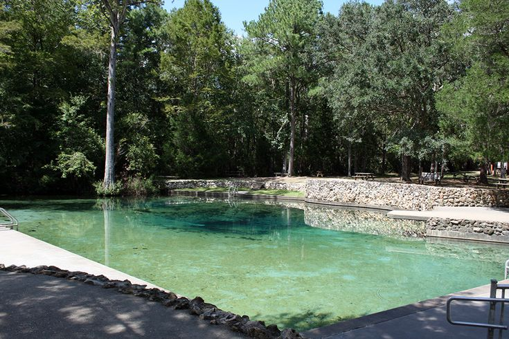 de leon springs dating De leon springs, fl has a median income of about $49,200 for people who own homes based on that number, a person should spend a maximum of $1,148 on expenses related to housing renters have a slightly different median income, which is $19,550.