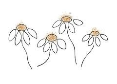 Minimalist Drawing Drawings - Chamomile by Frank Tschakert