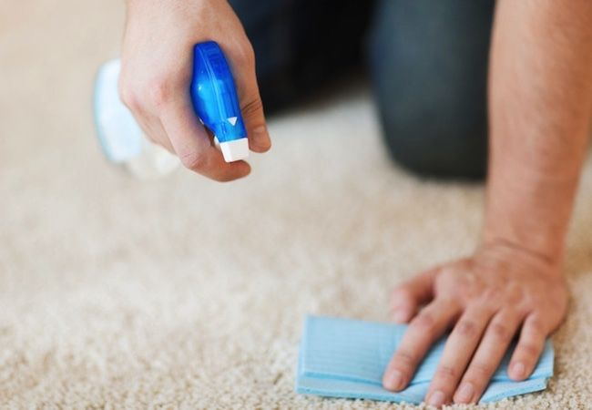 how-to-remove-coffee-stains-from-carpet