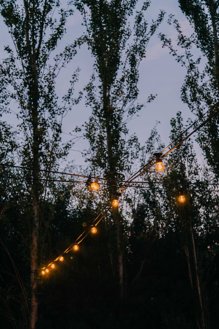 Summer festoon lighting